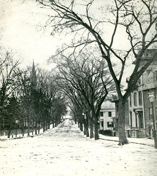View of Upper State Street in 1880